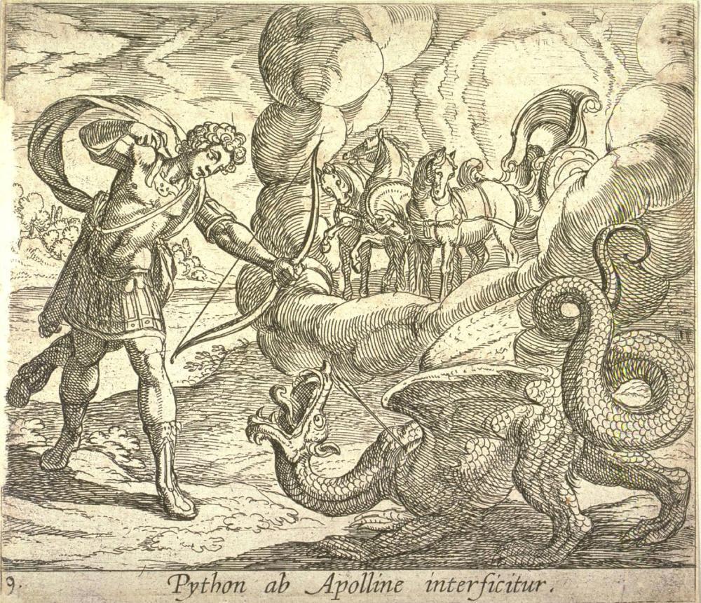 pitonyapolo