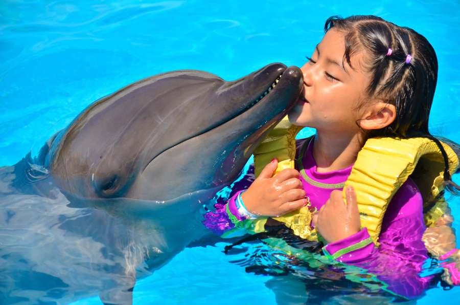 los-niños-aman-a-los-delfines
