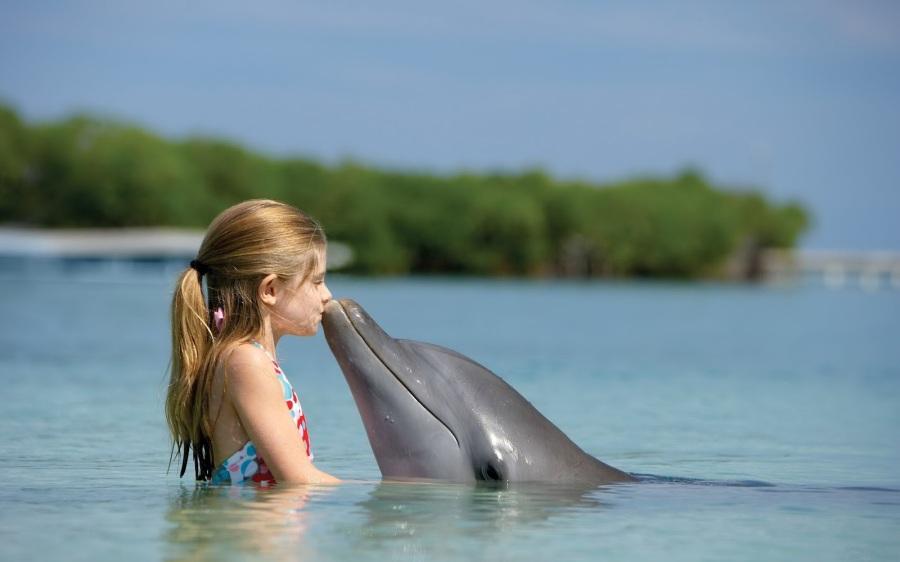 niña-y-delfin