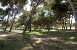 parquepinar1